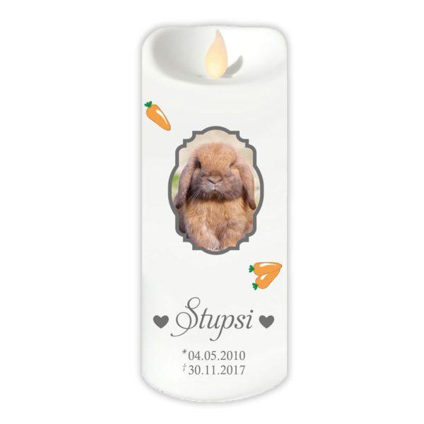 LED Kerze Twinkle für Tiere mit Foto im Rahmen und Karotten