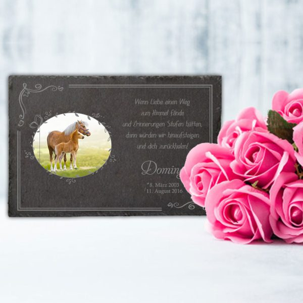 Gedenktafel fürs Tier mit Foto im Schmetterlingrahmen