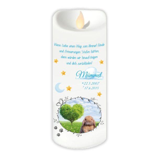 LED Kerze Twinkle für Tiere mit Foto im Schmetterlingrahmen